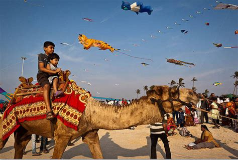 Photo Gallery of International Kite Festival Fairs and