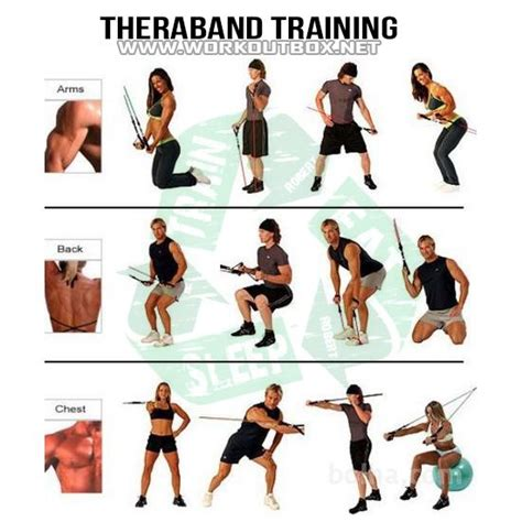 Theraband Training - Healthy Fitness Workouts Bicep Chest