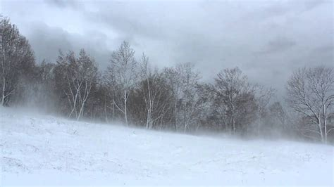 Winter Wind 1 Hour / Relaxing Snowstorm Sound, Winds